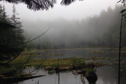 running-towards-fog-on-a-lake